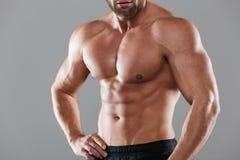 一个肌肉坚强的赤裸上身的男性爱好健美者的播种的图象 库存图片