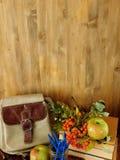 一个背包、学校用品和花楸浆果在木背景 回到构成学校 库存图片