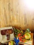 一个背包、学校用品和花楸浆果在木背景 免版税库存照片
