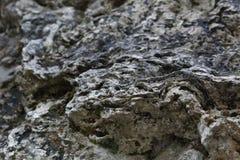 一个自然凝灰岩岩石的多孔结构在山的 库存图片