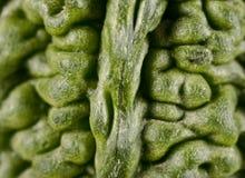 一个苦涩金瓜的绿色纹理 图库摄影