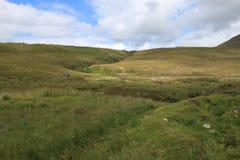 一个草甸在苏格兰 免版税库存照片