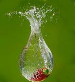 一个草莓在水中 免版税库存照片