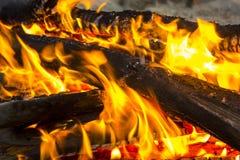 一个营火的煤炭在森林特写镜头的 图库摄影