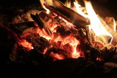 一个营火的煤炭在森林里 免版税库存照片
