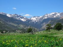 一个落矶山脉夏日 免版税图库摄影
