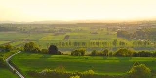 一个葡萄园的全景在托斯坎乡下 免版税图库摄影
