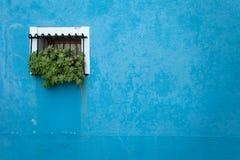 从一个蓝色房子的小窗口在Burano海岛,威尼斯 图库摄影
