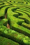 一个螺旋混乱的树篱螺旋迷宫 库存图片