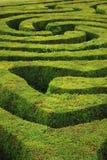 一个螺旋混乱的树篱螺旋迷宫 免版税库存照片