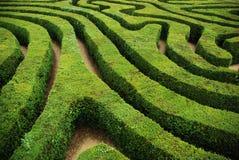 一个螺旋混乱的树篱螺旋迷宫 免版税库存图片