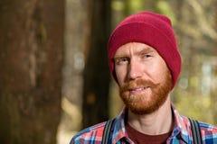 一个行家的画象有一个红色胡子特写镜头的 库存图片