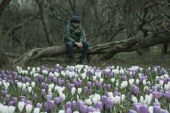 一个被弄脏的哀伤的男孩坐一棵下落的树在黑暗的公园,在他前面的许多番红花花-他淡漠,忧郁,了无欢乐 免版税库存照片