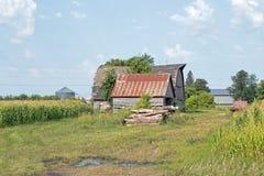 一个被放弃的农厂棚子 库存图片
