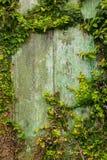 一个被放弃的房子的废墟圣地的在圣地米格尔欺诈 免版税库存图片
