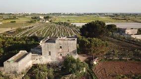 一个被放弃的石乡下房子和葡萄园的空中建立的射击 股票视频