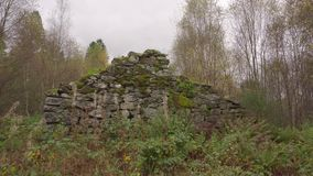 一个被破坏的房子的墙壁,站立在森林中间 股票录像