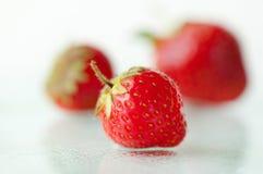 一个被聚焦的草莓 库存图片
