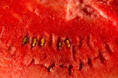 一个西瓜的红色背景纹理与黑种子的 切的背景剪切果子半菠萝 库存图片
