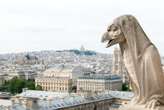 一个象鸟的面貌古怪的人Notre Dame III 图库摄影