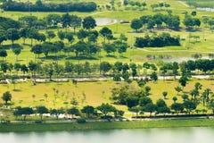 一个豪华,绿色高尔夫球场的高的看法 免版税库存照片