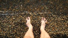 一个赤足人在pebbled海滨在水中站立 照相机的焦点在人的脚 股票录像