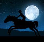 一个车手的剪影在一匹连续马的 免版税库存图片