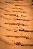 一个轮胎的踪影在沙子的 免版税库存图片