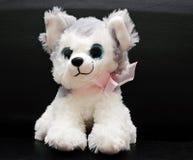 一个软的玩具是一条小的白色狗 免版税图库摄影
