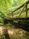 一个远足者人行桥的一张侧视图沿阿巴拉契亚足迹的 免版税库存照片