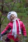 一个逗人喜爱的小女孩在秋天时间的一个杉木森林里 库存图片