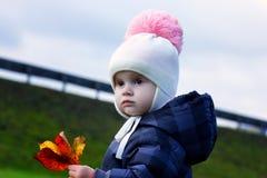 一个逗人喜爱的小女孩的秋天画象一件黑暗的夹克的 在黄色叶子花束的手上  晴朗秋天的日 图库摄影