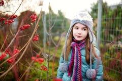 一个逗人喜爱的小女孩的画象在美好的秋天天 库存照片