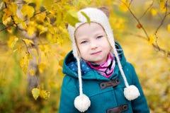 一个逗人喜爱的小女孩的画象在美好的秋天天 免版税库存图片
