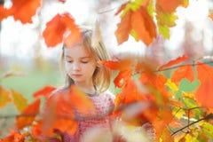 一个逗人喜爱的小女孩的画象在autunm天 免版税库存照片