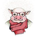 一个逗人喜爱的小猪的画象在玻璃的