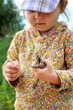 一个逗人喜爱的幼儿女孩在手和笑上的拿着一只青蛙蟾蜍 免版税库存图片