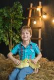 一个逗人喜爱的男孩的画象一件蓝色衬衣的在农场拿着幼鹅 库存图片