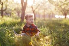 一个逗人喜爱的男孩获得乐趣外面在国家在夏天在日落 使用用黄色蒲公英的男孩在庭院里 库存图片