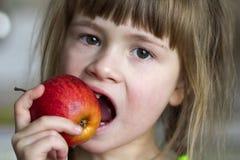 一个逗人喜爱的矮小的卷曲无牙的女孩微笑并且拿着一个红色苹果 吃一个红色苹果的一个愉快的婴孩的画象 孩子丢失牛奶 免版税库存照片