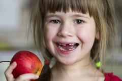 一个逗人喜爱的矮小的卷曲无牙的女孩微笑并且拿着一个红色苹果 吃一个红色苹果的一个愉快的婴孩的画象 孩子丢失牛奶 库存照片