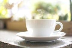 一个通入蒸汽的白色杯子热的热奶咖啡有bokeh树背景 库存图片
