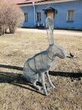 一个野兔的设施从金属线的 免版税库存照片