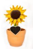 一个钩针编织的向日葵在花盆和心脏 库存图片