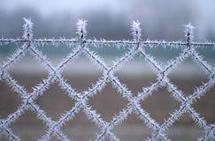 一个铁丝网的特写镜头视图有霜的与冰晶在蓝天下有被弄脏的背景 库存图片