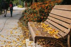 一个长木凳在有黄色叶子的一个公园在秋天 秋天场面 人们在背景中走 免版税库存图片