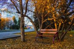 一个长木凳在秋天公园站立 库存图片