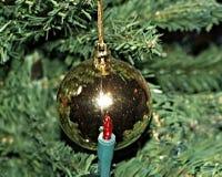 一个闪耀的金黄圣诞节球从圣诞树精美地垂悬 免版税库存图片