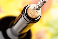 一个闭合的瓶与拔塞螺旋的红葡萄酒 顶视图 免版税库存照片