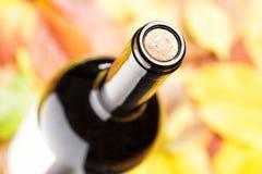 一个闭合的瓶红葡萄酒 顶视图 免版税库存图片